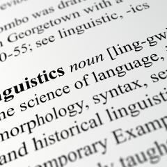 Linguistics Seminar Series - School of Languages and